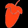 Иконка программы FL Studio 12